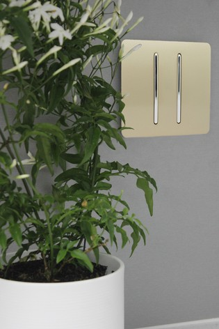 2 Gang 2 Way 10 Amp Light Switch by Trendiswitch