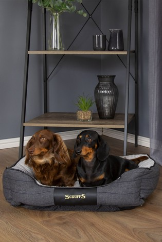 Windsor Extra Large Breed Dog Box Bed by Scruffs®