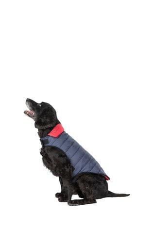 Trespass Flint Kimmi X Quilted Dog Jacket