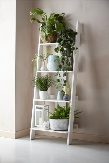 Flynn Compact Ladder Shelf
