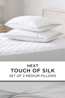 Set of 2 Sleep In Silk Medium Pillows