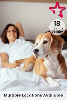 Dog Friendly Hotel Stays Gift Experience by Activity Superstore