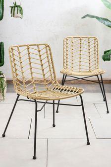 Tahiti Dining Chairs