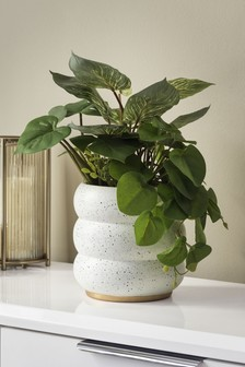 Artificial Plants In Curved White Pot