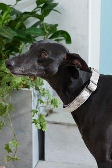 Velour Dog Collar