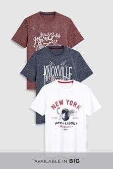 Graphics T-Shirts Three Pack
