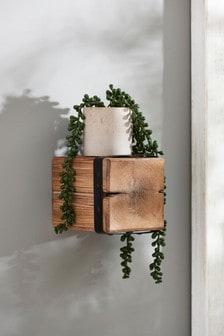 Small Salvage Shelf