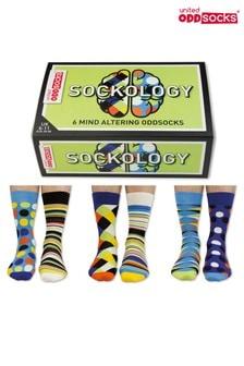 Sock Academy Sockology Socks