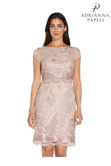 Adrianna Papell Pink Embroidered Lace Popover Dress